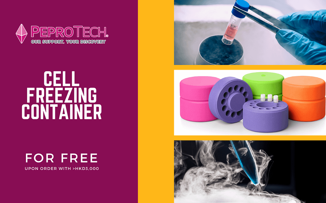 Summer Promotion – Free Cell Freezing Container