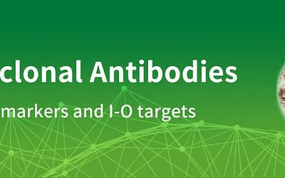 Free Monoclonal Antibodies from OriGene