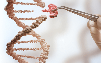 Improve your CRISPR Gene Editing with Small Molecules