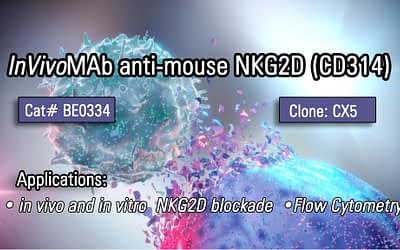 Bio X Cell New Product – 𝙄𝙣𝙑𝙞𝙫𝙤MAb anti-mouse NKG2D (CD314) (Clone CX5)