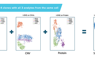 AML Subpopulations Defined by SNV, CNV, and Protein Expression