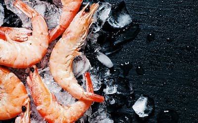 The only heat labile alkaline phosphatase originally isolated from arctic shrimp